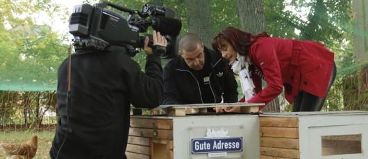 """Das Filmteam von """"hundkatzemaus"""" begleitet den Umzug der Stadthühner"""
